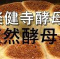 天然酵母パン(楽健寺酵母) 特集