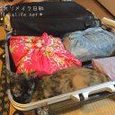 子供の海外留学◆日本からのお土産わが家の場合
